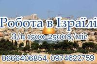 thumb_326486862080366799939696442806764860604416n