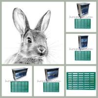 rabbitkomplekt1